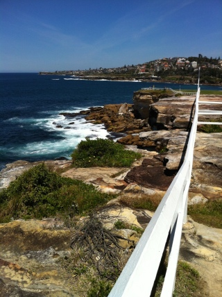 Coogee coast walk 2