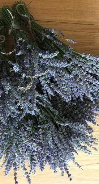 lavender-5-a.jpg